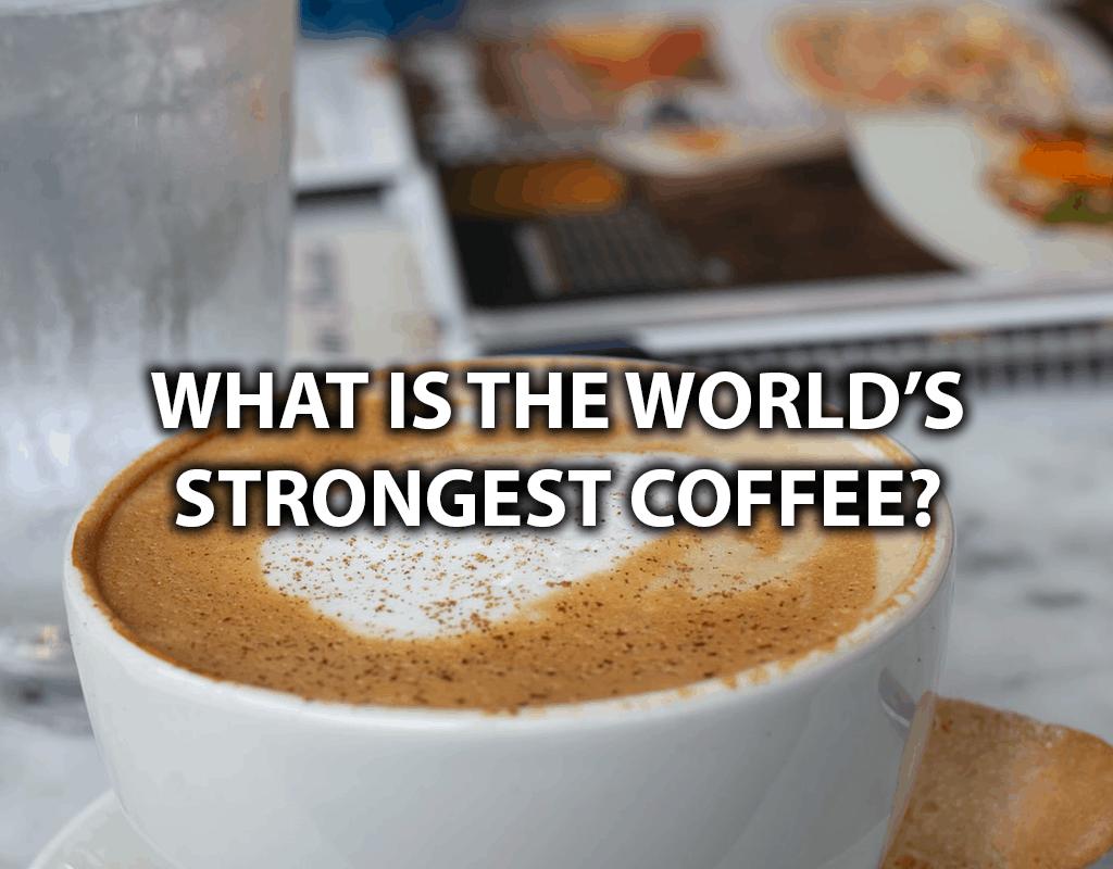 most caffeine coffee