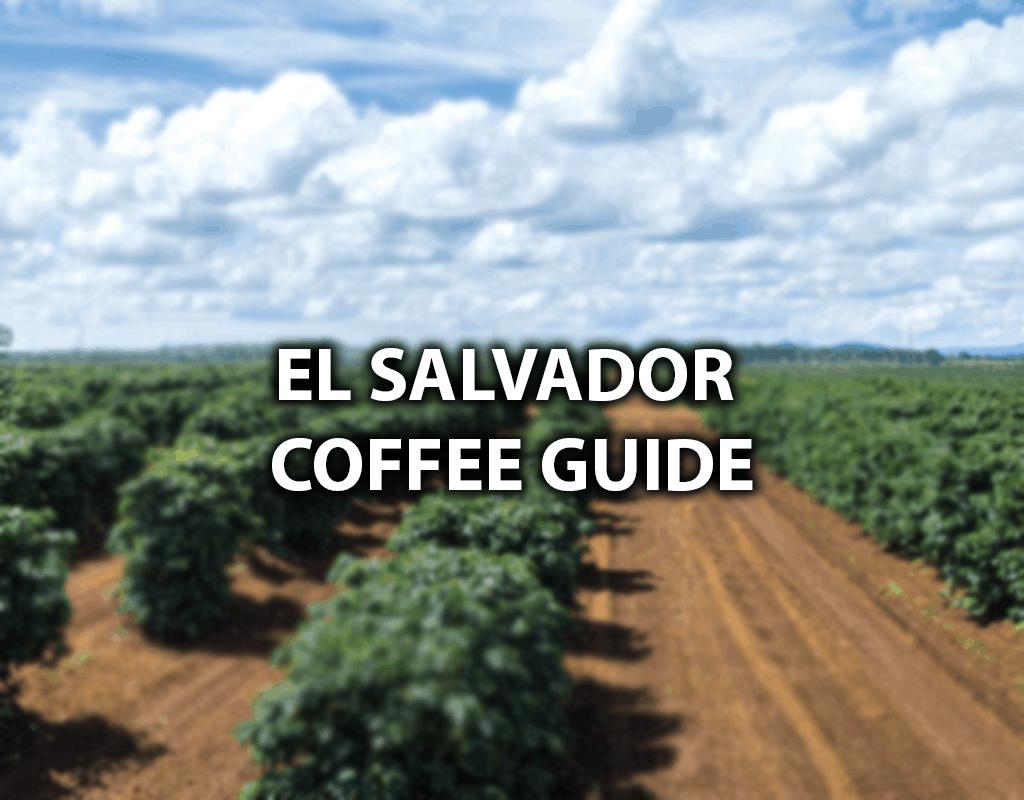 salvadoran coffee