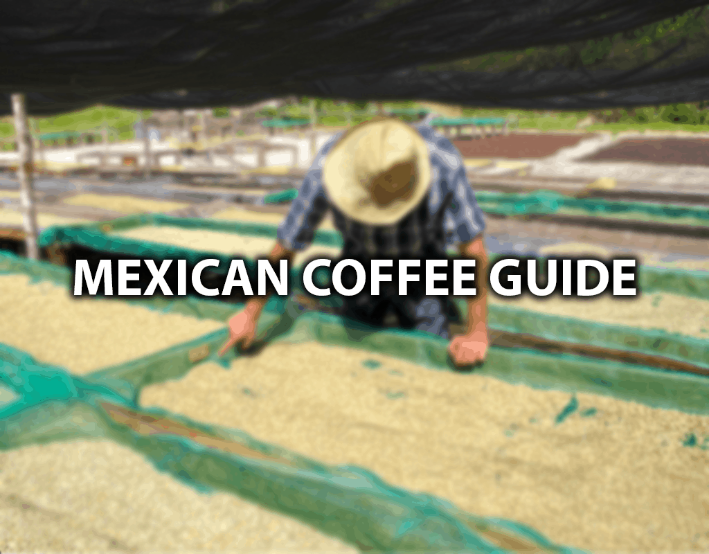 Mexican coffee brand