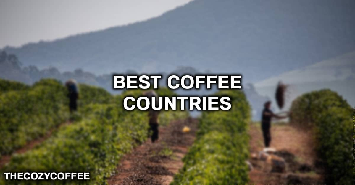 the best coffee in the world comes from