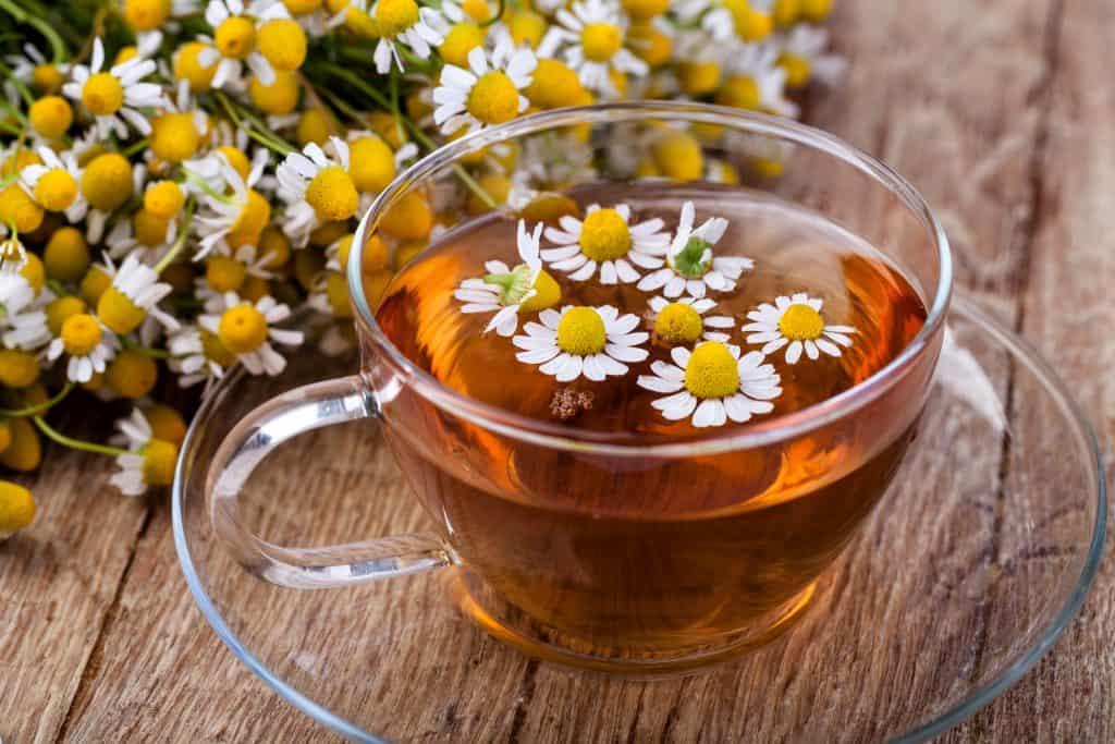 best quality chamomile tea
