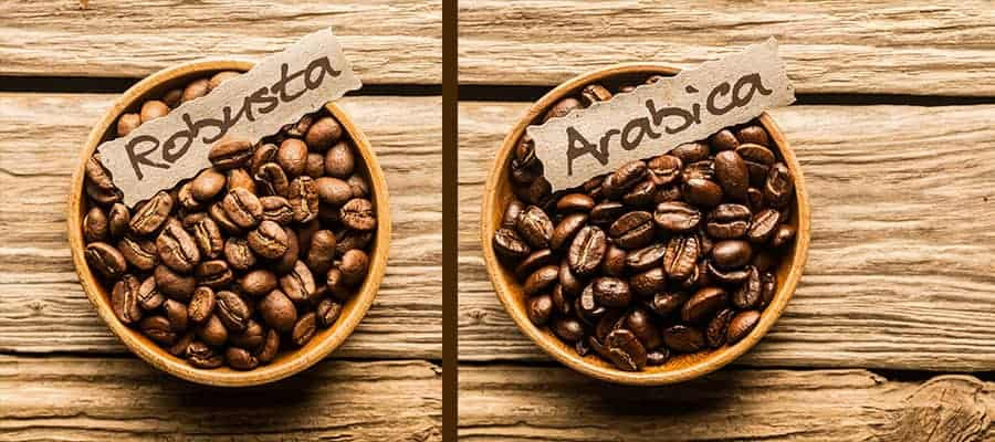 best roast coffee beans